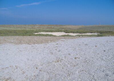Spiagge Cabras